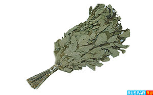 Ольховый веник для бани